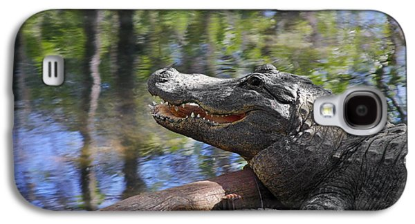 Florida - Where The Alligator Smiles Galaxy S4 Case by Christine Till