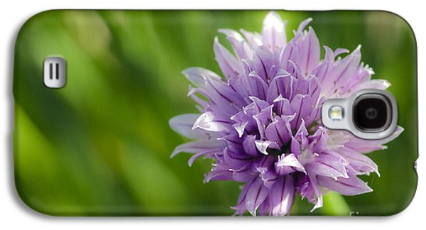 Flowering Chive Galaxy S4 Case