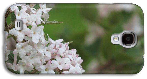 Flowering Shrub 4 Galaxy S4 Case by Linda L Martin