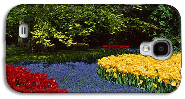 Flowers In A Garden, Keukenhof Gardens Galaxy S4 Case by Panoramic Images