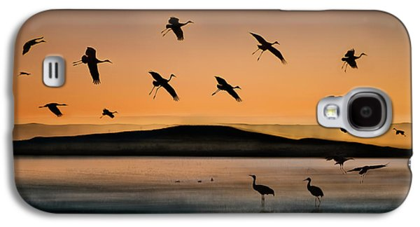 Fly-in At Sunset Galaxy S4 Case