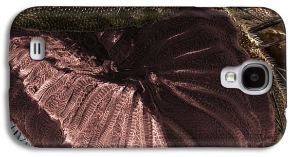 Fly Proboscis Galaxy S4 Case by Dr Clifford Barnes, University Of Ulster