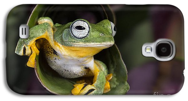 Flying Tree Frog Galaxy S4 Case