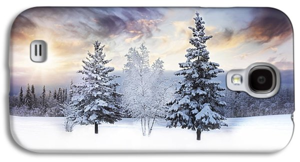 For The Love Of Winter Galaxy S4 Case by Amber Fite