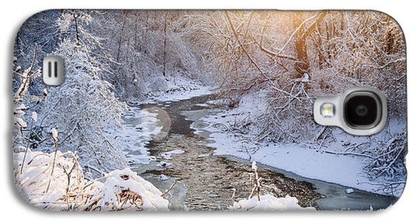 Forest Creek After Winter Storm Galaxy S4 Case by Elena Elisseeva