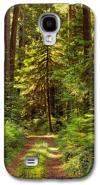 Forest Path 5 Galaxy S4 Case