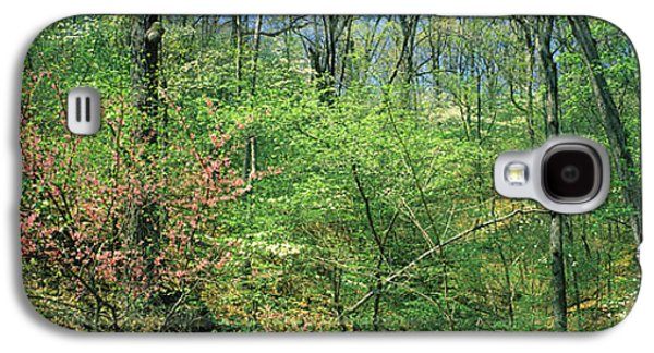 Forest, Trail Of Tears, Shawnee Galaxy S4 Case by Panoramic Images