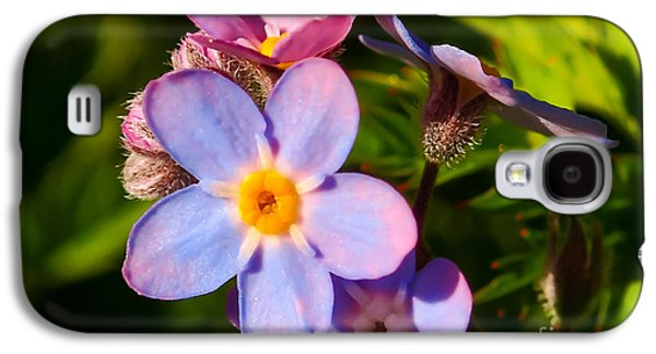 Forget-me-knots Galaxy S4 Case