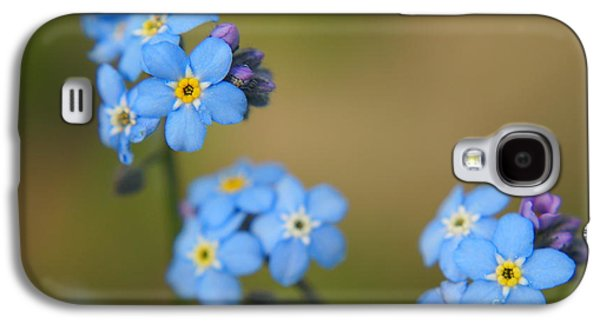 Forget Me Not 01 - S01r Galaxy S4 Case by Variance Collections