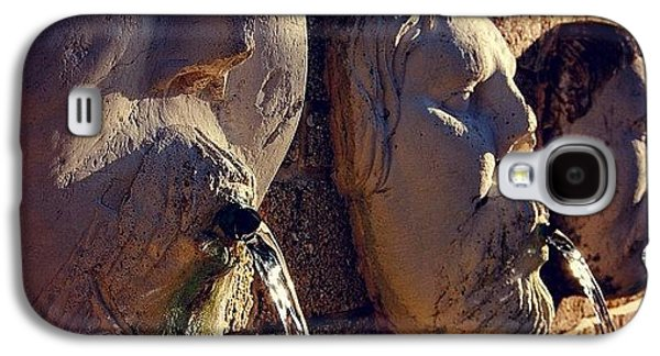 Iger Galaxy S4 Case - Fountain - Fl by Joel Lopez
