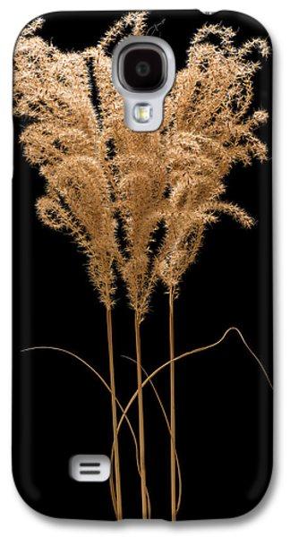 Fountain Grass Galaxy S4 Case by Steve Gadomski