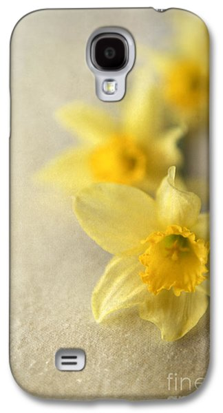 Four Daffodils On Beige Background Galaxy S4 Case
