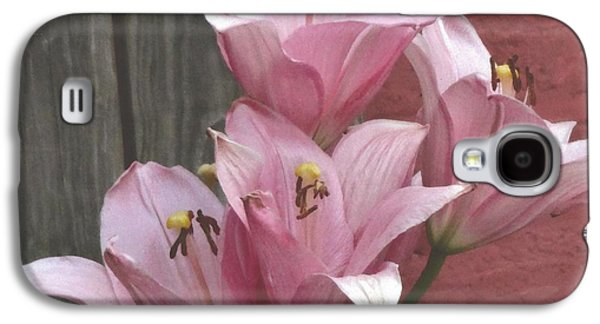 Galaxy S4 Case featuring the photograph Four Pink Asiatic Lilies by Rod Ismay