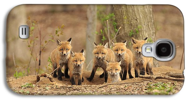 Fox Family Portrait Galaxy S4 Case