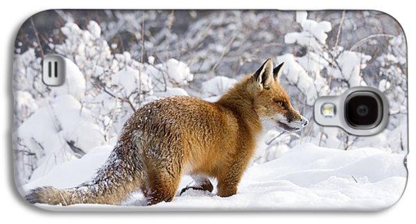 Fox In The Snow Galaxy S4 Case