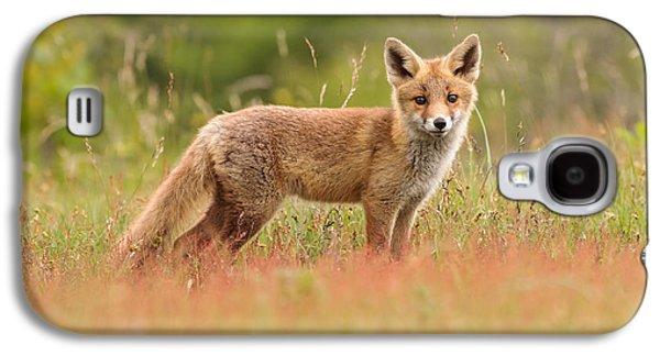 Fox Kit In A Field Of Sorrel Galaxy S4 Case by Roeselien Raimond
