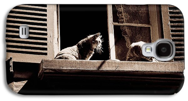French Windowsill Cats In The Sun Galaxy S4 Case