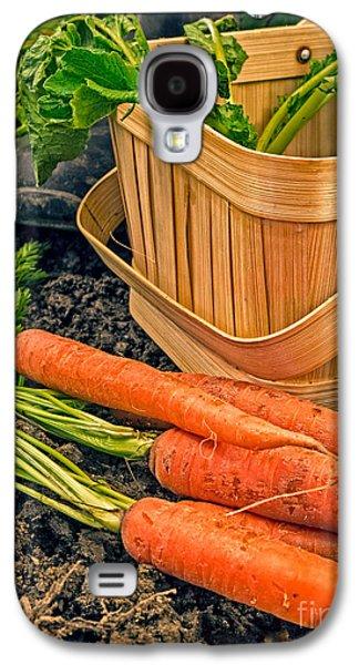 Carrot Galaxy S4 Case - Fresh Garden Vegetables by Edward Fielding