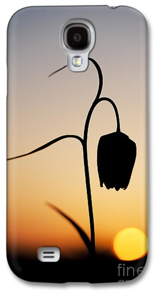 Fritillary Sunset Galaxy S4 Case by Tim Gainey