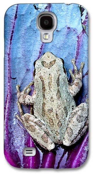 Frog On Cabbage Galaxy S4 Case by Jean Noren