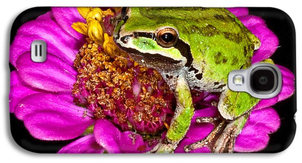 Frog  On Flower Galaxy S4 Case by Jean Noren