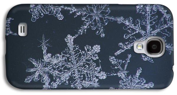 Frost Crystal On Glass Kodiak Isl Galaxy S4 Case by Marion Owen