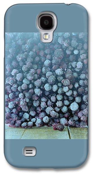Frozen Blueberries Galaxy S4 Case by Romulo Yanes