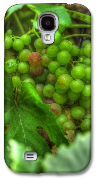 Fruit Bearing Galaxy S4 Case