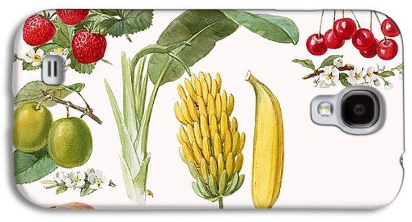 Fruits Galaxy S4 Case by English School