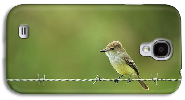 Flycatcher Galaxy S4 Case - Galapagos Flycatcher (myiarchus by Pete Oxford