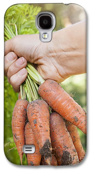 Carrot Galaxy S4 Case - Garden Carrots by Elena Elisseeva