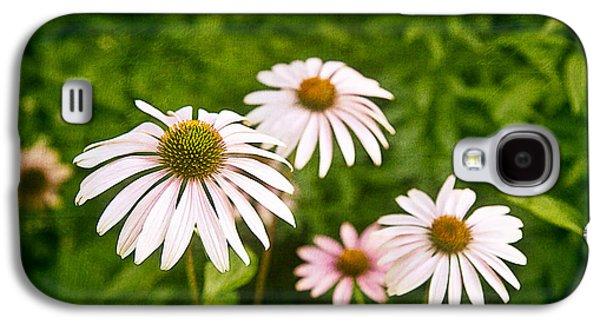 Garden Dasies Galaxy S4 Case by Tom Mc Nemar