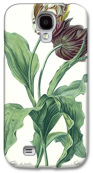 Garden Tulip Galaxy S4 Case