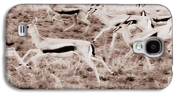 Gazelles Running Galaxy S4 Case