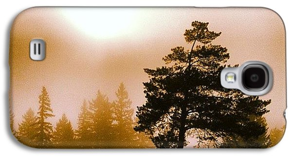 Morning Light Galaxy S4 Case