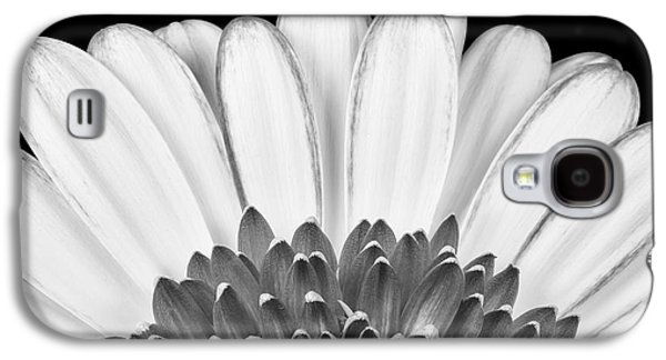 Daisy Galaxy S4 Case - Gerbera Rising by Adam Romanowicz