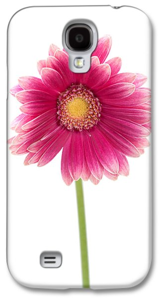 Gerbera Galaxy S4 Case