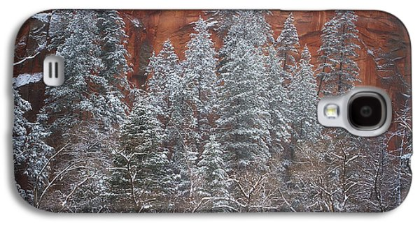 Ghosts Of Winter Galaxy S4 Case by Peter Coskun