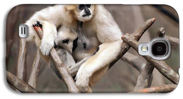 Gibbon Nursing Its Baby Galaxy S4 Case by Chris Flees