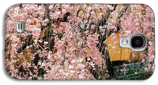 Gionshirakawa Cherry Blossom Kyoto Japan Galaxy S4 Case by Panoramic Images