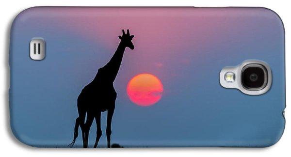 Giraffe At Sunset Chobe Np Botswana Galaxy S4 Case by Andrew Schoeman