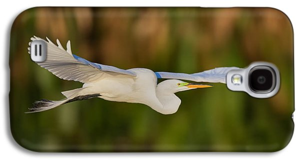 Gliding Great Egret Galaxy S4 Case