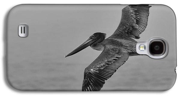 Gliding Pelican In Black And White Galaxy S4 Case