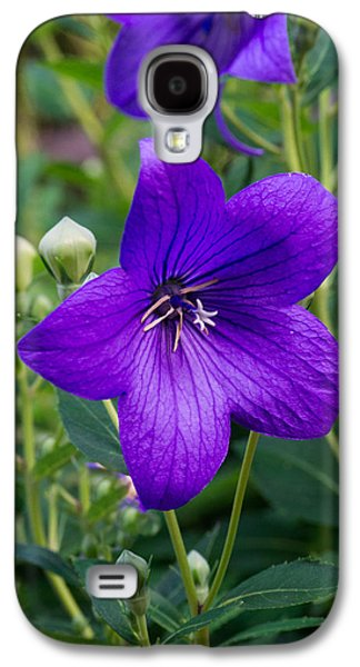 Glowing Balloon Flower Greating The Morning Galaxy S4 Case by Douglas Barnett