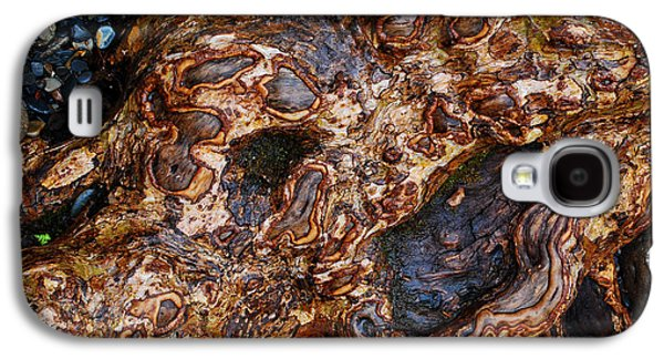 Gnarly Roots  Galaxy S4 Case by Nancy Mueller