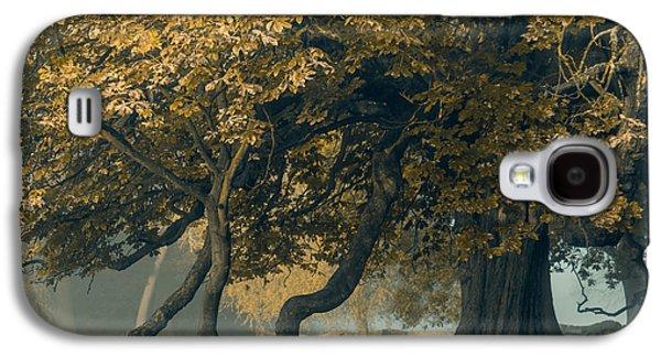 Gold Leaf Galaxy S4 Case by Chris Fletcher