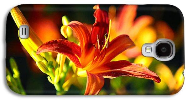Golden Daylily Rays Galaxy S4 Case by Carol Groenen