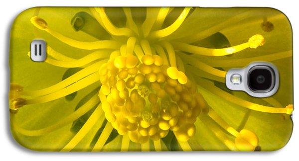 Golden Hellebore Glory Galaxy S4 Case