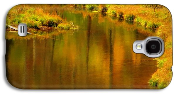 Galaxy S4 Case featuring the photograph Golden Reflections by Karen Shackles