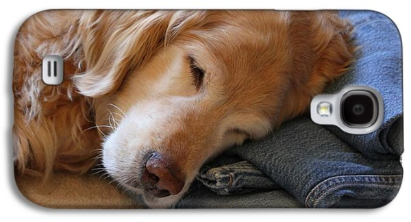 Golden Retriever Dog Forever On Blue Jeans Galaxy S4 Case